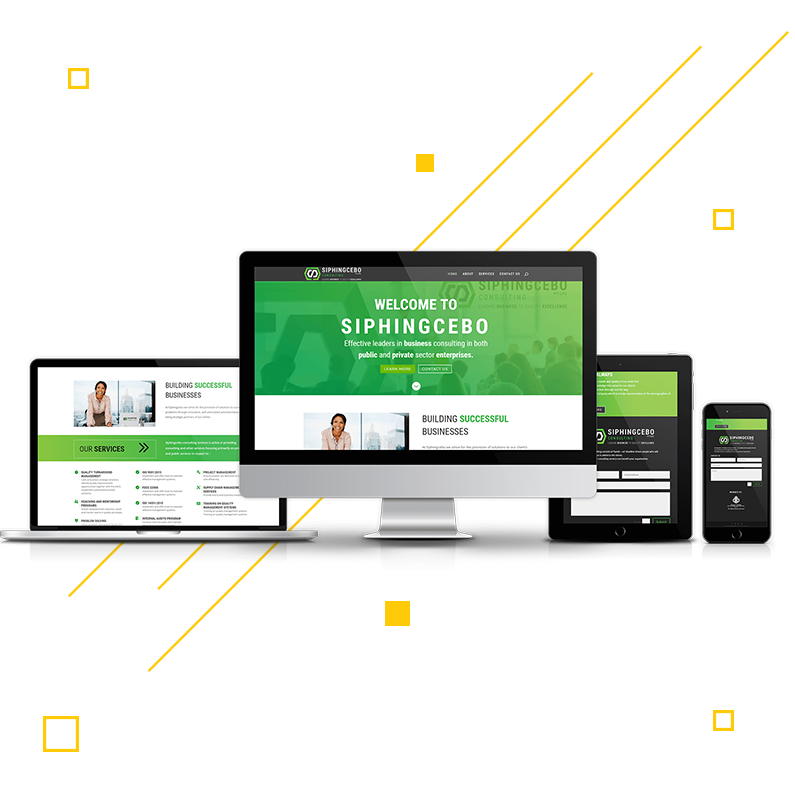 Looking for a a professional Website?